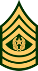 Command Sergeant Major, E-9