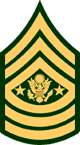 Sergeant Major of the Army, E-9