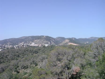 View from the Castell de Bellver